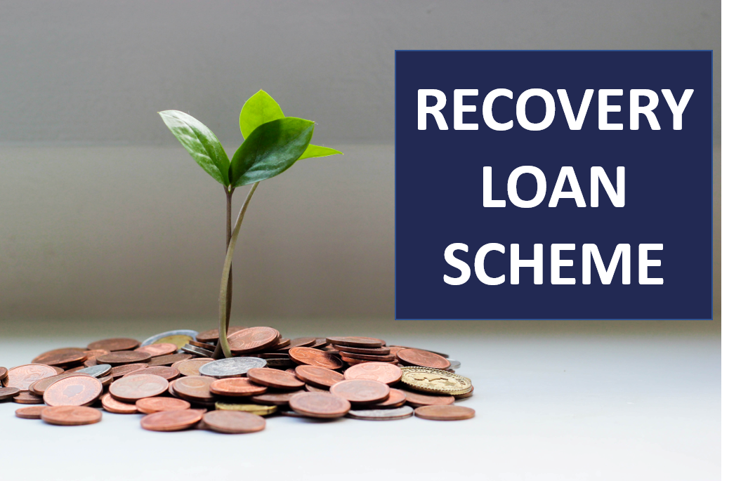 image of a pile of coins with a plant growing out and the words Recovery Loan Scheme for website J&J Commercial Finance